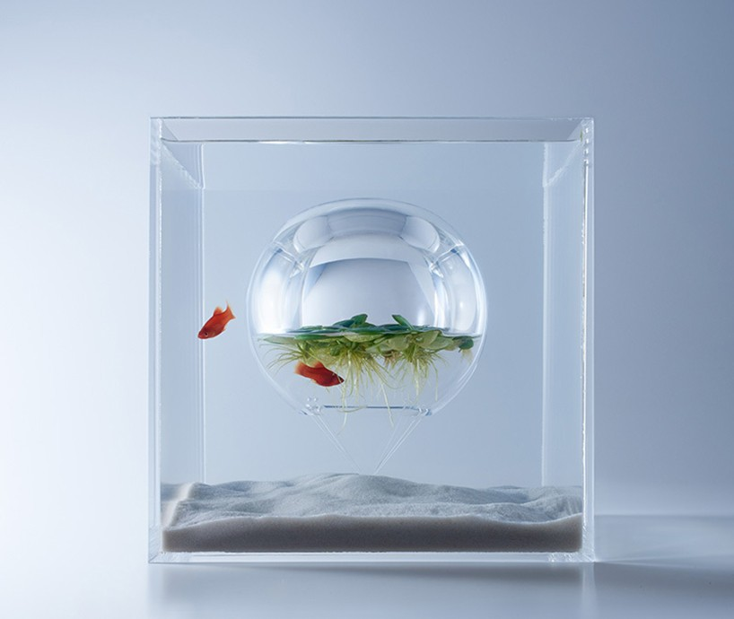 haruka-misawa-waterscape-fish-aquariums-etoday-04